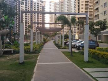 400 sqft, 1 bhk Apartment in Salarpuria Sattva Greenage Bommanahalli, Bangalore at Rs. 12000