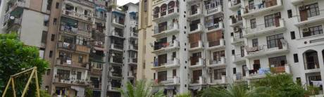 2150 sqft, 3 bhk Apartment in Amrapali Exotica Sector 50, Noida at Rs. 1.0000 Cr