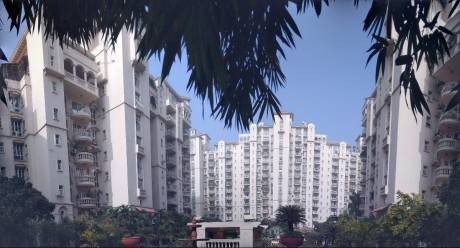 3000 sqft, 3 bhk Apartment in DLF Beverly Park II Sector 25, Gurgaon at Rs. 3.2500 Cr