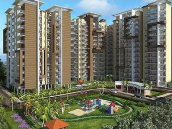 2850 sqft, 4 bhk Apartment in Ansal Sushant Estate Sector 52, Gurgaon at Rs. 2.6000 Cr