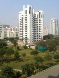 3390 sqft, 4 bhk Apartment in Parsvnath Exotica Sector 53, Gurgaon at Rs. 75000