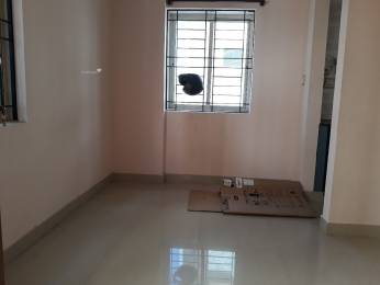 400 sqft, 1 bhk Apartment in Builder Project BTM Layout, Bangalore at Rs. 10000