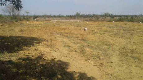 2500 sqft, Plot in Builder info nagar Chatabar, Bhubaneswar at Rs. 12.8000 Lacs
