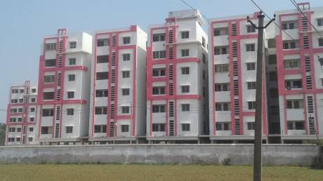920 sqft, 2 bhk Apartment in Builder HITECH PEARL Gudia Pokhari Square, Bhubaneswar at Rs. 20.2500 Lacs