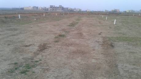 1295 sqft, Plot in Builder kalyan vihar Kantilo, Bhubaneswar at Rs. 12.4500 Lacs