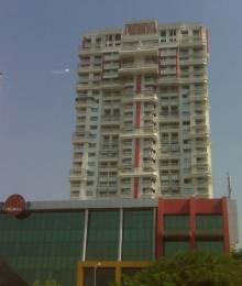 1620 sqft, 3 bhk Apartment in Bhumiraj Iraisaa Sanpada, Mumbai at Rs. 40000