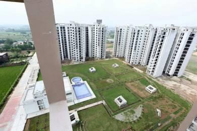 1850 sqft, 3 bhk BuilderFloor in Builder motiaz floors Ambala Highway, Chandigarh at Rs. 52.0000 Lacs