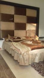 1900 sqft, 3 bhk Apartment in Builder Project Peermachhala, Chandigarh at Rs. 55.3650 Lacs