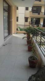 1400 sqft, 3 bhk Apartment in Builder Project Panchkula Sec 20, Chandigarh at Rs. 41.3300 Lacs