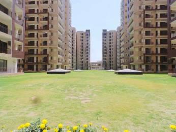 2394 sqft, 4 bhk Apartment in Hanumant Bollywood Heights I Panchkula Sec 20, Chandigarh at Rs. 74.1200 Lacs