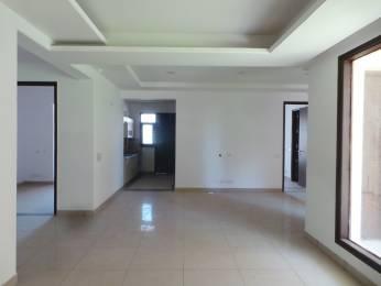2332 sqft, 4 bhk Apartment in Hanumant Bollywood Heights 2 Panchkula Sec 20, Chandigarh at Rs. 65.3500 Lacs