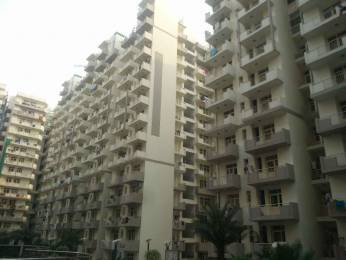 1480 sqft, 3 bhk Apartment in K World Estates Builders KW Srishti Raj Nagar Extension, Ghaziabad at Rs. 50.0000 Lacs