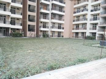 1250 sqft, 2 bhk Apartment in Saviour Greenisle Crossing Republik, Ghaziabad at Rs. 35.0000 Lacs