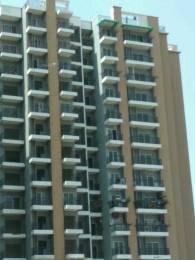 1265 sqft, 2 bhk Apartment in Saviour Saviour Park Mohan Nagar, Ghaziabad at Rs. 51.0000 Lacs