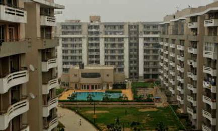 1775 sqft, 3 bhk Apartment in SVP Gulmohur Greens Rajendra Nagar, Ghaziabad at Rs. 14500