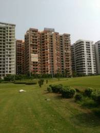 1350 sqft, 2 bhk Apartment in Arocon Golf Ville Crossing Republik, Ghaziabad at Rs. 12000