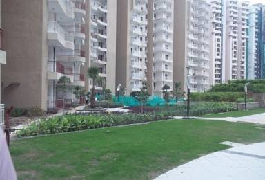 1250 sqft, 2 bhk Apartment in Dreamland The Willows Crossing Republik, Ghaziabad at Rs. 35.0000 Lacs