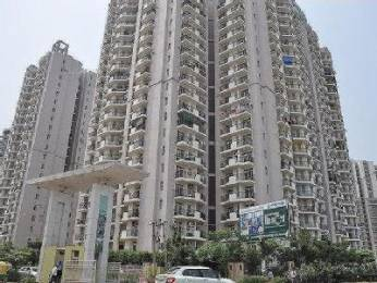1425 sqft, 3 bhk Apartment in Shourya Aura Chimera Raj Nagar Extension, Ghaziabad at Rs. 35.0000 Lacs