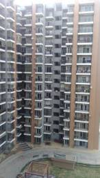 1800 sqft, 3 bhk Apartment in Saviour Saviour Park Mohan Nagar, Ghaziabad at Rs. 18000