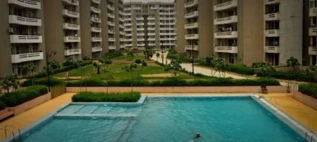 1280 sqft, 2 bhk Apartment in SVP Gulmohur Greens Rajendra Nagar, Ghaziabad at Rs. 11000