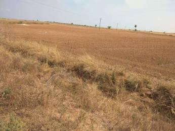 8586 sqft, Plot in Builder Project Kurnool Ulchala Road, Kurnool at Rs. 1.5000 Cr