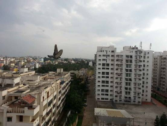 1458 sqft, 2 bhk Apartment in Alpine Eco Doddanekundi, Bangalore at Rs. 90.0000 Lacs
