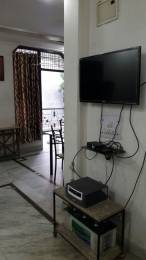 540 sqft, 1 bhk Apartment in DLF Phase 2 Sector 25, Gurgaon at Rs. 21000