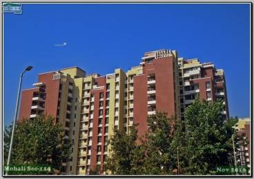 1680 sqft, 3 bhk Apartment in Army Welfare Housing Organisation AWHO Apartment Sector 114 Mohali, Mohali at Rs. 20000