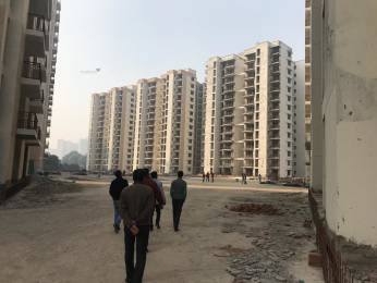 1300 sqft, 2 bhk Apartment in Shree Flora Sector 90, Gurgaon at Rs. 52.0000 Lacs