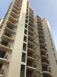 1300 sqft, 2 bhk Apartment in Shree Flora Sector 90, Gurgaon at Rs. 52.0000 Lacs