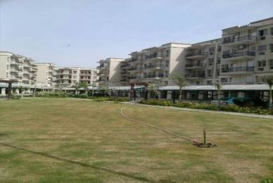 1200 sqft, 2 bhk Apartment in Parkwood Westend Sector 92, Gurgaon at Rs. 48.0000 Lacs
