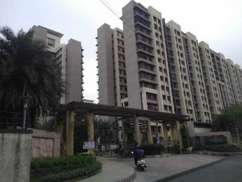 1299 sqft, 3 bhk Apartment in Kalpataru Riverside Panvel, Mumbai at Rs. 23000