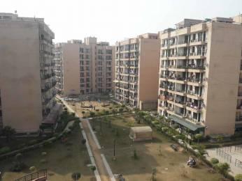 400 sqft, 1 bhk Apartment in Jaipuria Sunrise Greens VIP Rd, Zirakpur at Rs. 13.3000 Lacs