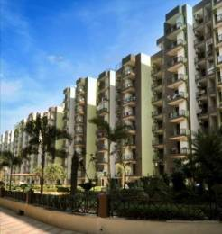 1530 sqft, 3 bhk Apartment in  Maya Garden City Nagla, Zirakpur at Rs. 13500