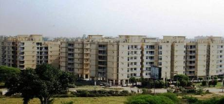 1775 sqft, 3 bhk Apartment in Ansal Ansal Woodbury Apartments Shiva Enclave, Zirakpur at Rs. 13000
