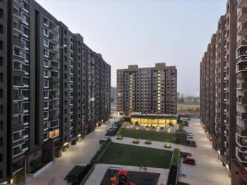 1730 sqft, 3 bhk Apartment in Savvy Swaraaj Sports Living Gota, Ahmedabad at Rs. 62.0000 Lacs