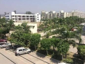 1315 sqft, 3 bhk Apartment in Builder antriksh nri city Sidcul, Haridwar at Rs. 40.0000 Lacs