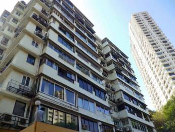 780 sqft, 1 bhk Apartment in Builder Project Napeansea Road, Mumbai at Rs. 85000