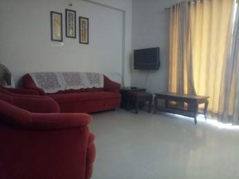 1660 sqft, 3 bhk Apartment in Builder Project New Alkapuri, Vadodara at Rs. 30000