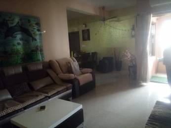 2100 sqft, 3 bhk Apartment in Builder Project Subhanpura, Vadodara at Rs. 16000