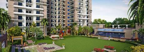 1150 sqft, 2 bhk Apartment in Arihant Ambar Sector 1 Noida Extension, Greater Noida at Rs. 40.0000 Lacs