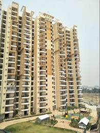 1095 sqft, 2 bhk Apartment in Savfab Jasmine Grove Shastri Nagar, Ghaziabad at Rs. 8500