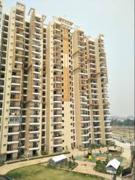 1425 sqft, 3 bhk Apartment in Savfab Jasmine Grove Shastri Nagar, Ghaziabad at Rs. 11500