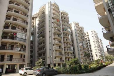 2350 sqft, 4 bhk Apartment in Fortune Fortune Victoria Heights Peer Muchalla, Zirakpur at Rs. 65.0000 Lacs