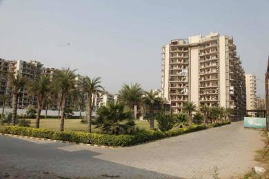 1750 sqft, 3 bhk Apartment in Fortune Fortune Victoria Heights Peer Muchalla, Zirakpur at Rs. 55.0000 Lacs