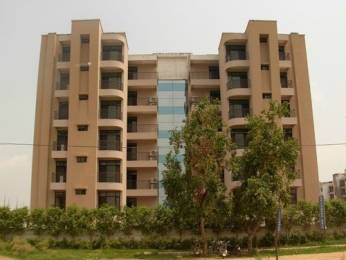 1727 sqft, 3 bhk Apartment in Hanumant Bollywood Heights Dhakoli, Zirakpur at Rs. 53.5000 Lacs