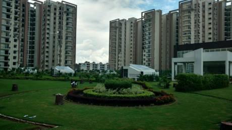 1910 sqft, 3 bhk Apartment in Motia Royal Citi Apartments Gazipur, Zirakpur at Rs. 67.0000 Lacs