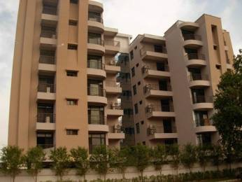 1727 sqft, 3 bhk Apartment in Hanumant Bollywood Heights Dhakoli, Zirakpur at Rs. 55.0000 Lacs