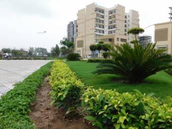 1156 sqft, 2 bhk Apartment in APS Highland Park Bhabat, Zirakpur at Rs. 32.9700 Lacs