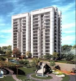 1560 sqft, 3 bhk Apartment in Paradigm The Hermitage Park Dhakoli, Zirakpur at Rs. 15000